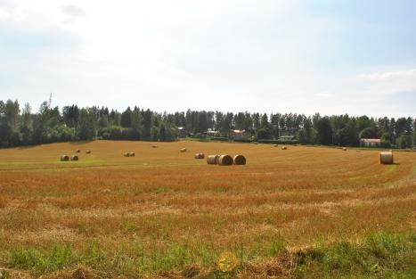 runeberg6